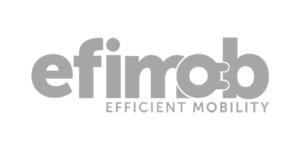 Logo efimob