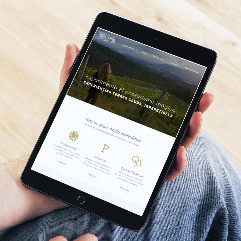 Diseño web enoturismo Terras Gauda